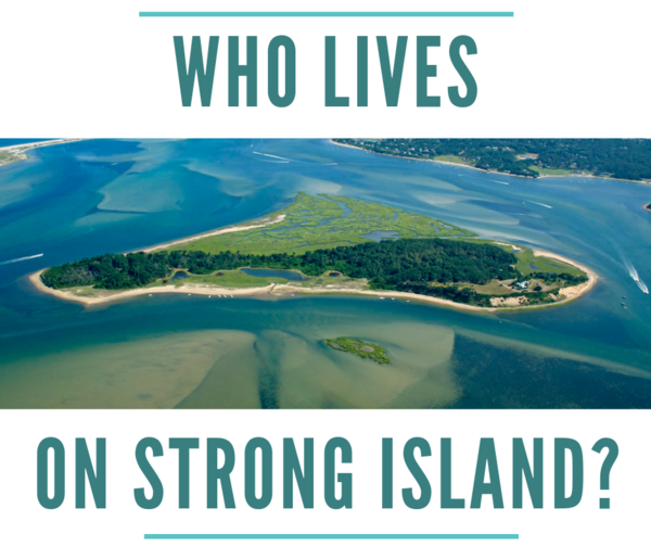 """Aerial photograph of strong island with text, """"who lives on strong island"""""""