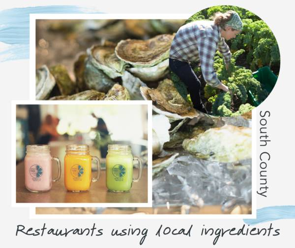 Graphic with photographs of oysters, smoothies and a woman farming with the blog's title as text