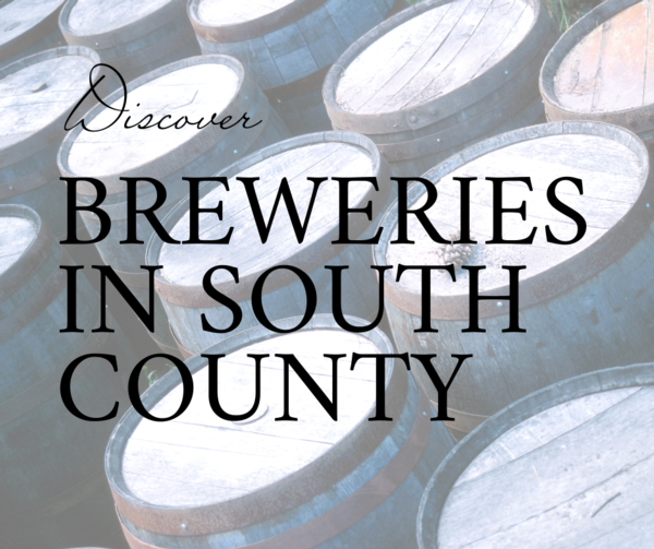 """photograph of barrels of beer with the text, """"discover breweries in south county"""" over it"""